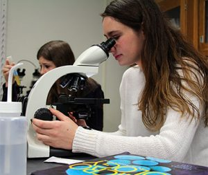 Student viewing in a microscope for biology class