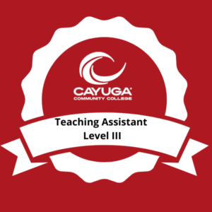 Teaching Assistant Level III
